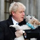 Борис Джонсън гласува с кучето си.