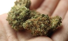 Спипаха 25- годишен с дрога в Монтана