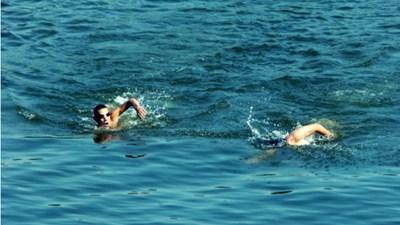 Участниците в преплуването на Дунав бяха 24 Снимка: Авторът