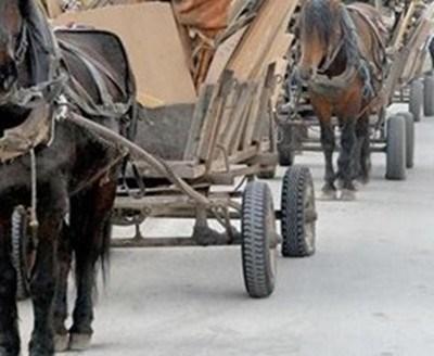 """Лек автомобил """"Форд"""" със софийска регистрация помете колона от три каруци на главния път от Шумен за Търговище. Снимка Архив"""