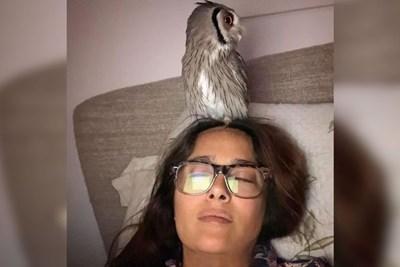 Салма Хайек обича да медитира със совата на главата си. СНИМКА: Инстаграм