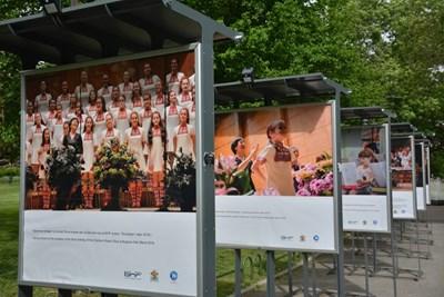 Кадър от изложбата, която от днес е пред Народния театър