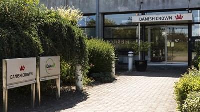Датска кланица затвори заради огнище на коронавирус. Снимка: rte.ie