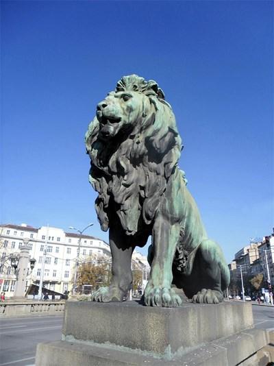 Лъвовете от