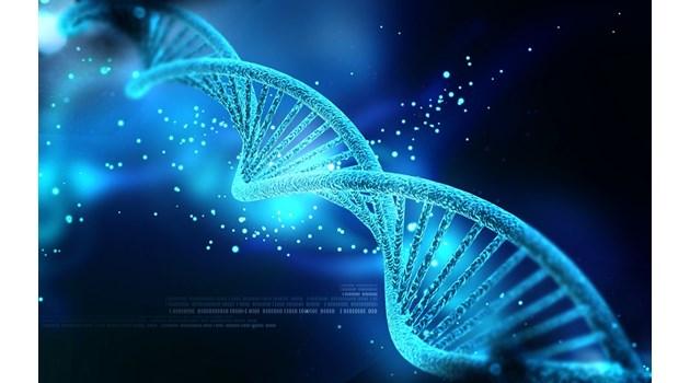 ДНК - свръхинтелигентният разум в суперкомпютър на 650 млн. години