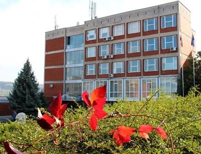 Дават стипендии по 300 евро за студенти в специалности с гръцки език във Велико Търново