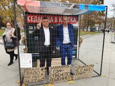 Ерджан Себайтин от ДПС и Михаил Христов от БСП подкрепиха инициативата да се забрани дрането на норки, като също влязоха в клетката.  СНИМКА: ДПС ПРЕСЦЕНТЪР