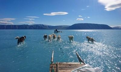 Впечатляващата снимка на преждевременното топене на ледовете обиколи света СНИМКА: инстаграм
