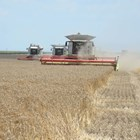 """Фонд """"Земеделие"""" обяви кога ще плаща субсидиите за кампания 2021 г."""