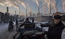 Предсказание от 2016: Глобалното затопляне е измама. Чака ни ледена епоха от 2020 г.