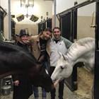 Григор губи на двойки във Виена, гледа тренировка на ездачи
