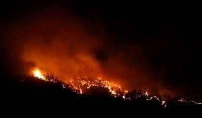 Горският пожар в Португалия взе десетки жертви СНИМКА: Ройтерс