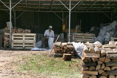 Макар и в жегата, пловдивчанин си набавя дърва за зимата. Снимка: Евгени Цветков