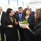 Министър Танева: Защо 2020 г. е най-важна за българското земеделие