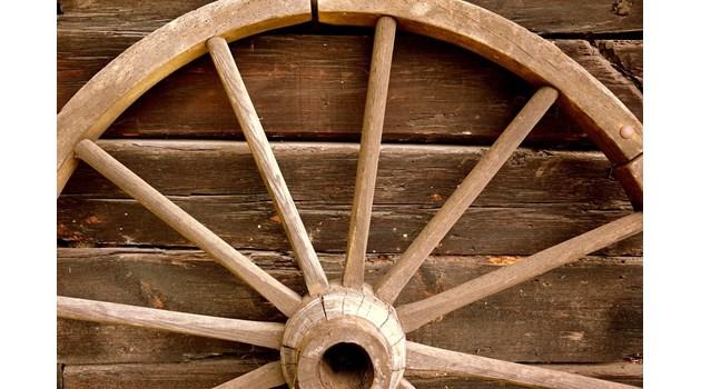 """В ловното стопанство """"Тервел"""" задържаха каруца и 7,5 куб. м дърва за огрев"""