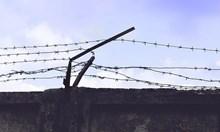 8 г. затвор за мъж за трафик на 29,5 килограма екстази