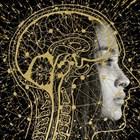Експерти: Изкуственият интелект ще разгърне растежа във всички сектори