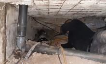 Разкриха подземна оранжерия за марихуана в София, до която се стига по 40-метров тунел