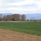 Средната цена на 1 дка земеделска земя у нас вече е около 1000 лв.