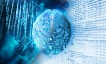 Как участвахме във вкарването на мозъка в компютър