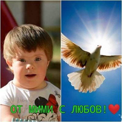 Снимка: Фейсбук/ Заедно за слънчо Мими