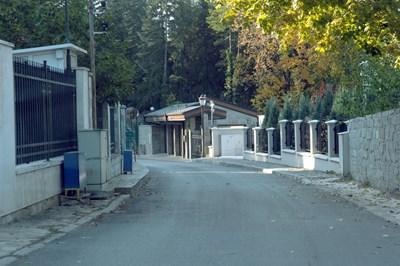 """Ул. """"Секвоя"""" в Бояна, където от години се намират охраняваните вили на властта"""