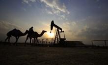 Жалко, че заради петрола цивилизовани държави се съобразяват с примитивна страна като Саудитска Арабия