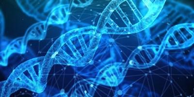 7c459a27dbe Китай спря работата по генното редактиране на бебета - 24chasa.bg