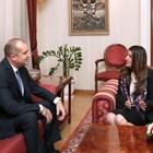 Чудя се защо картината от срещата на президента Радев с американската посланичка не е окачена по-ниско