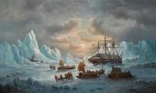 След 175 г. разкриха как са загинали 133-мата в Арктика