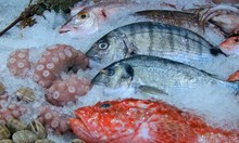 Внимание: Опасни видове риба