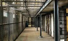 Масови арести в Бургас, 12 зад решетките за кражби и побоища