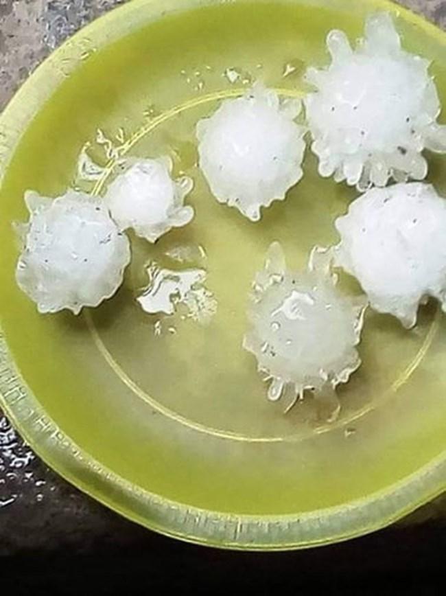 Градушка във формата на коронавирус падна в Китай и Мексико