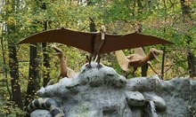 """Учени предполагат: Птерозаврите са били """"плешиви"""""""