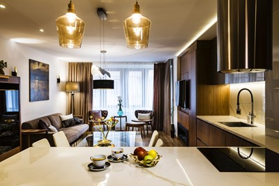 Димиращо осветление в хола. Завесите са тип back out, за да изолират максимално и шума и светлината отвън. Под телевизора - биоетанолова камина