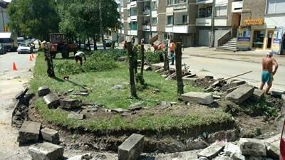 Реализацията на ландшафтния проект започна с отсичането на десетки брези СНИМКА: Снимка: Фейсбук
