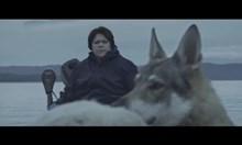 Дончева, овцата и вълкът