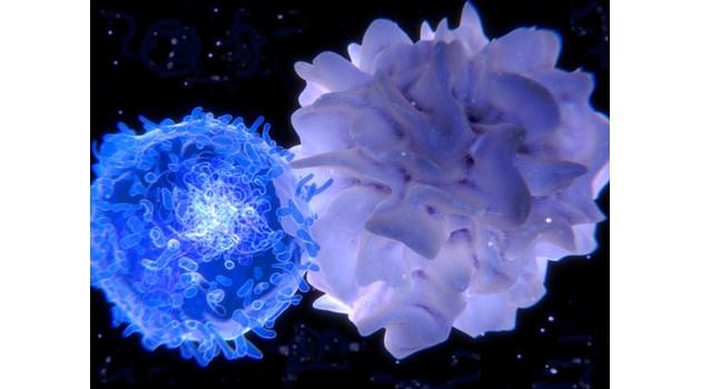 РНК – ключ в лечението на рака