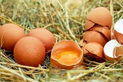 Яйцето – от суперхрана №1 до хирургична превръзка