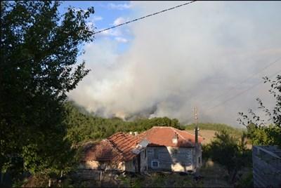 Пожар обхвана 250 декара гора и застрашава 2 махали в Кирковско (Обновена)