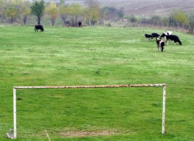 Стара футболна врата затисна 3-годишен в Асеновград