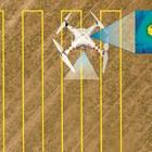 Защита на птичи гнезда с дронове и AI