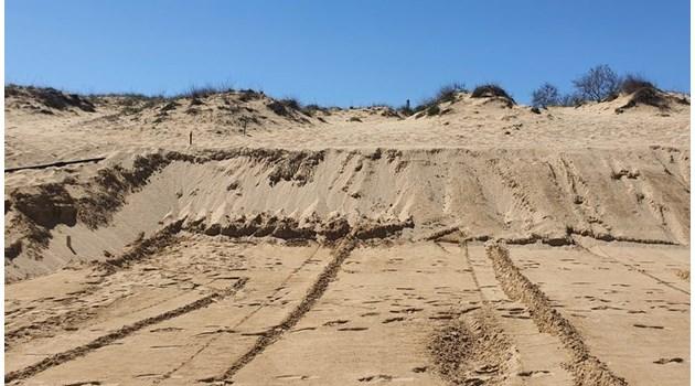 Пясъчните дюни скоро ще останат само в енциклопедиите