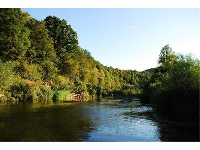 КЛОНДАЙК: Край река Велека има огромни златни залежи.
