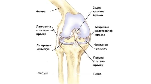 Защо въртят колената