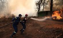 Подпалвачи или късо съединение са причините за пожара на Евбея