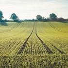 Предимства на съвместното внасяне на торове и семена