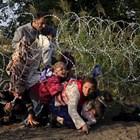 Фронтекс: Броят на мигрантите по източния маршрут нараства