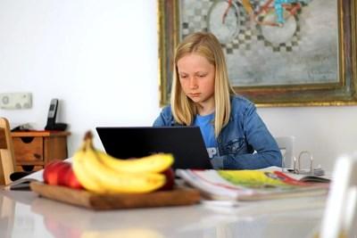 Американските учени са изследвали онлайн активността на 227 млади хора, за които се смята, че са изложени на риск от самоубийство СНИМКА: Пиксабей