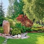 Как акцентите променят градината?